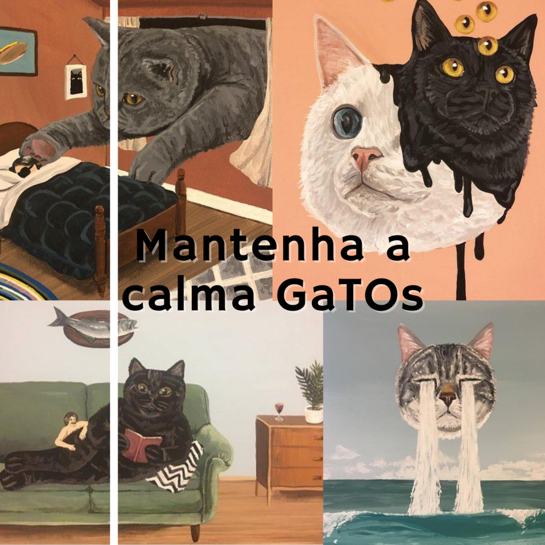 Mantenha a Calma GaTOs!